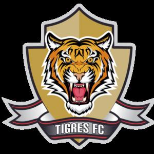 tigresfutbolclub.com